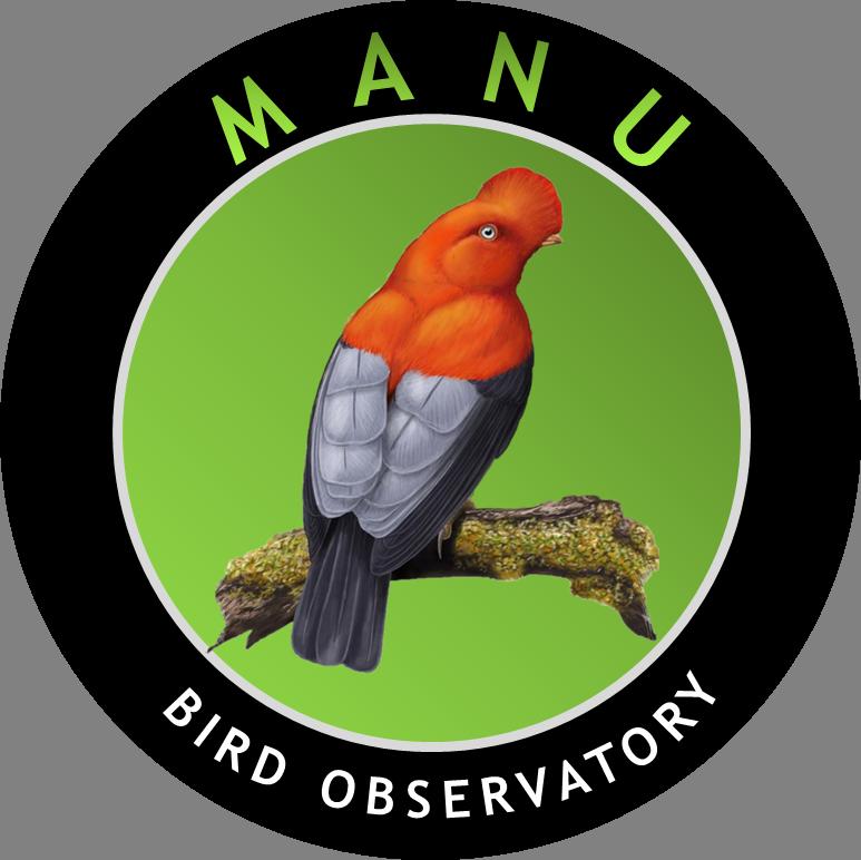 Manu Bird Observatory