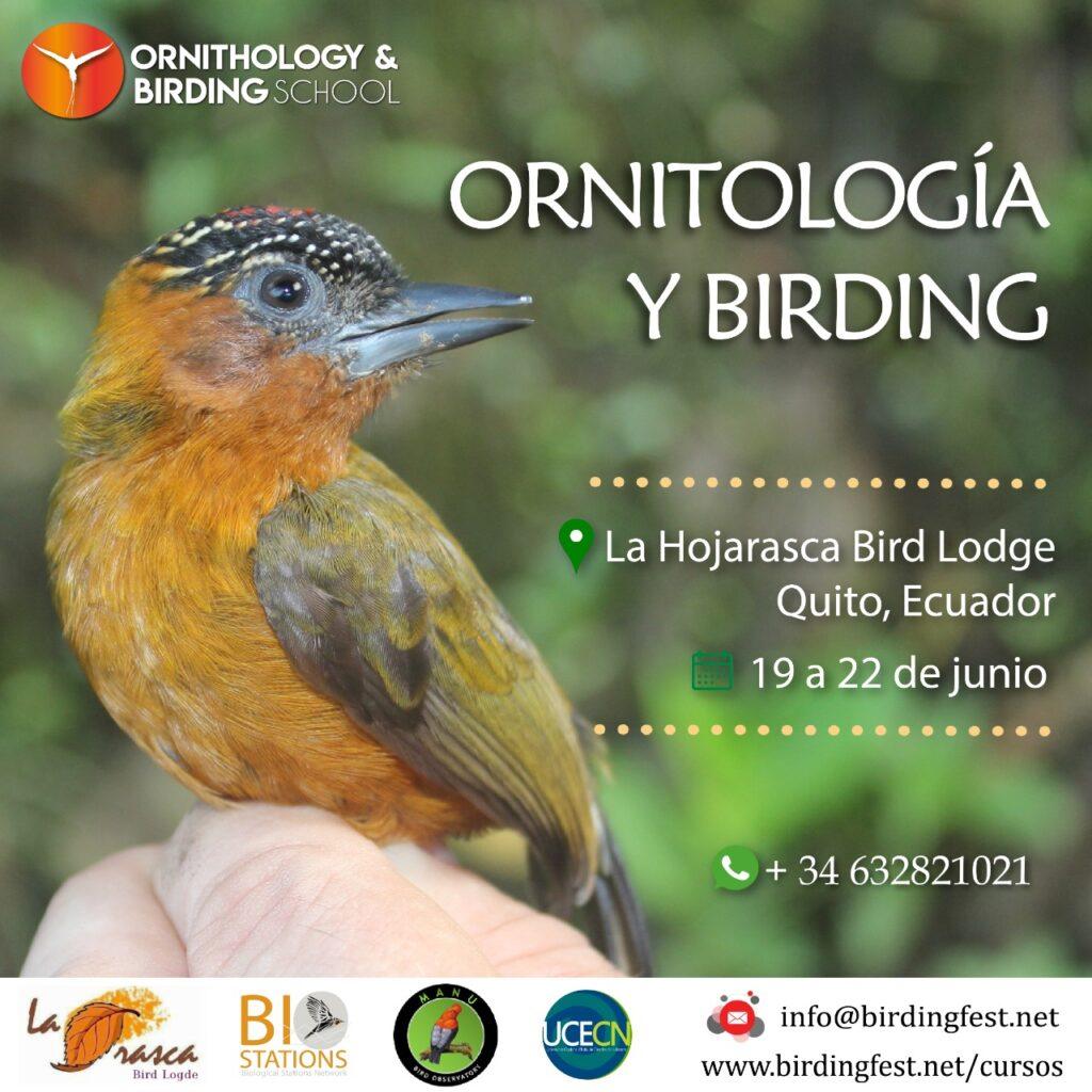 Ornitologia Quito